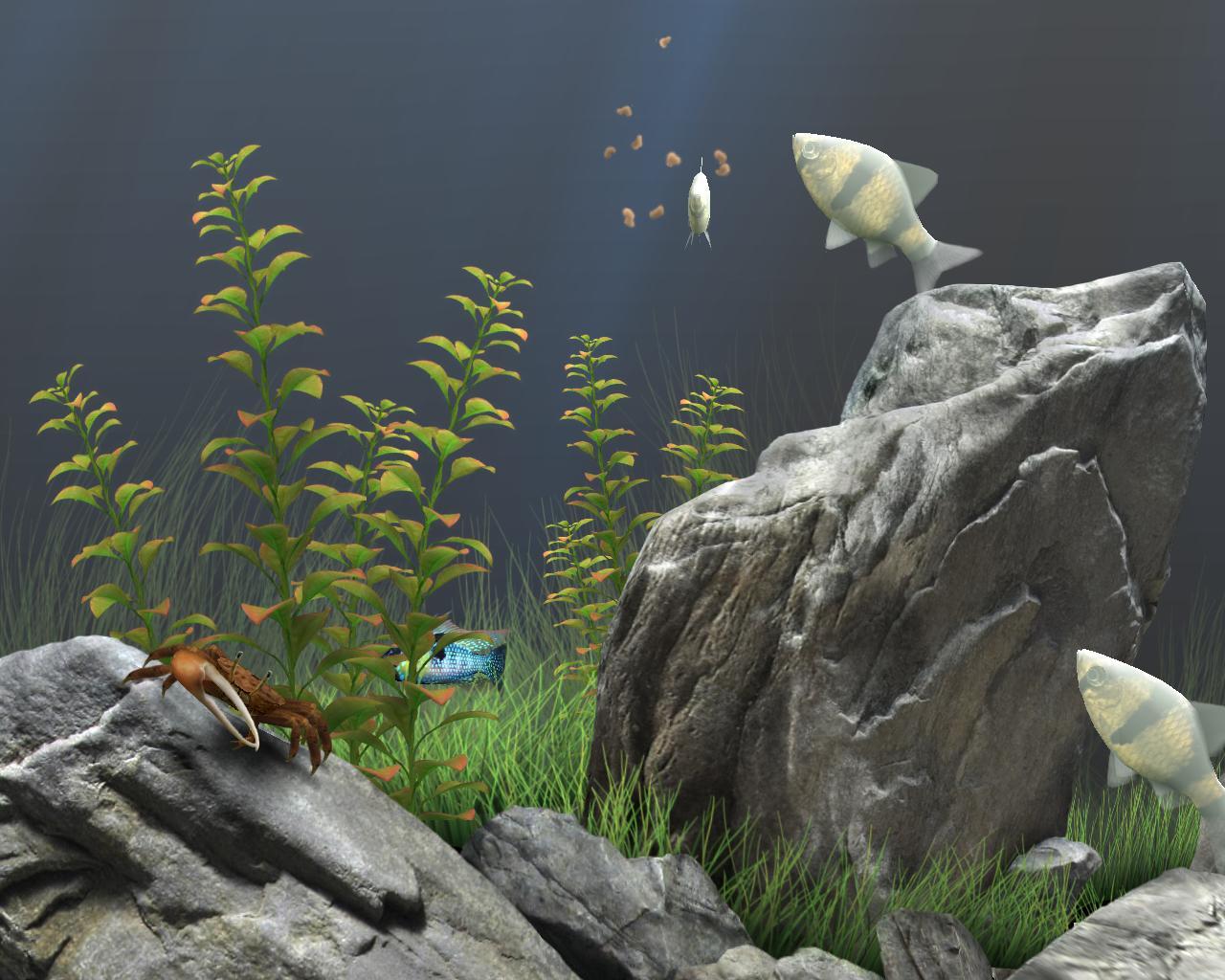 Www Dream Aquarium Free Screensaver